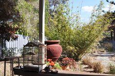 My garden... from my blog 727m2 - a garden diary: http://www.727m2.blogspot.com