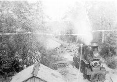 Pensacola and Andalusia Railroad Company train unloading logs into Escambia River. 1890's