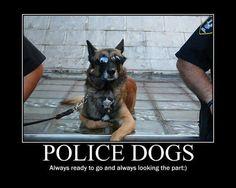 cop humor pictures - Bing Images