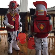 Homemade costume. Marshall, Paw Patrol. Halloween 2016, Halloween Stuff, Halloween Crafts, Halloween Ideas, Diy Costumes, Costume Ideas, Halloween Costumes, Marshall Paw Patrol Costume, Paw Patrol Birthday