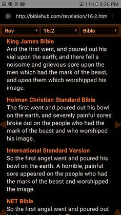 #KingJames #1611 #standardbearer #divineorder #establishmentoftheletterofthelaw