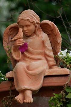 Little angel with little bird
