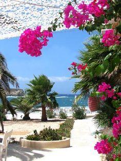 Emmy DE * Antiparos Island, Cyclades, Greece