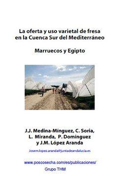 La Oferta y la USO varietal de fresa en la Cuenca Sur del Mediterráneo. Por José Manuel López Aranda (3 €)