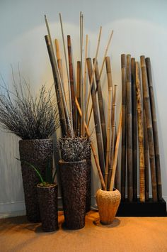 1000 images about deco bambou on pinterest phyllostachys nigra cannes and bamboo. Black Bedroom Furniture Sets. Home Design Ideas