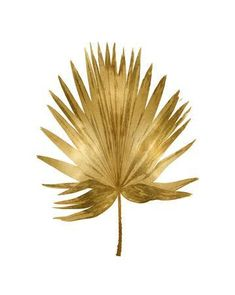 size: Stretched Canvas Print: Gold Palm IV by Melonie Miller : Artists Using advanced technology, we print the image directly onto canvas, stretch it onto support bars, and finish it with hand-painted edges and a protective coating.