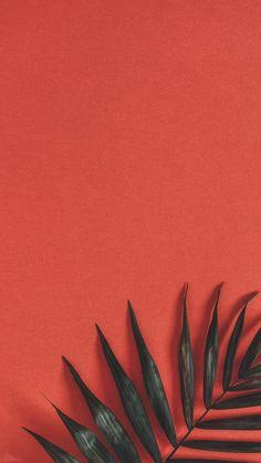 40 Super Cute Flowers and Fruit Wallpaper 40 Super Cute Flowers and Fruit Wallpaper . - 40 super cute flowers and fruits wallpapers 40 super cute flowers and fruits wallpapers, This image - Wallpaper Tumblr Lockscreen, Disney Phone Wallpaper, Iphone Background Wallpaper, Cellphone Wallpaper, Aesthetic Iphone Wallpaper, Aesthetic Wallpapers, Wallpaper Quotes, Galaxy Wallpaper, Iphone Wallpaper Plants