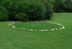 fairy ring - Ireland  I love fairy rings!!