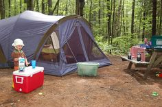 Real camping with the kids..Doing it this christmas in NZ.Yay!