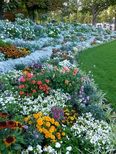 I'd love for our flower gardens to look like this!! Love the curved edges, too.