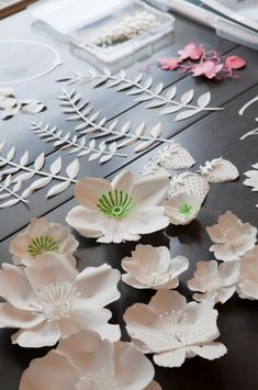 Paper Flowers by Jo Lynn Alcorn