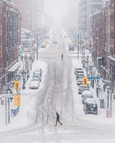 Toronto, 2017 winter - Photo by Aimee Hernandez Toronto Snow, Toronto Winter, Toronto City, Canada, Ontario, Toronto Images, Snow Pictures, Winter Magic, Winter Scenery