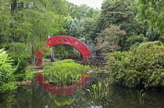 This red arched bridge at the Bellingrath Gardens and Home outside of Mobile is just as pretty as the tranquil water and lush greenery it's surrounded by.