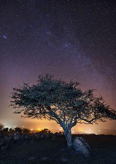 Capel Elen - Isle of Anglesey - Wales (von Kristofer Williams)