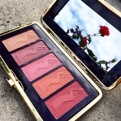 new pinup girl Amazonian clay 12-hour blush pallette