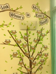 Owl classroom theme (y) Owl Theme Classroom, Preschool Classroom, Future Classroom, Classroom Ideas, Kindergarten, School Displays, Classroom Displays, Classroom Organisation, Classroom Management