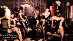 Acid Black Cherry「黒猫 〜Adult Black Cat〜」PV (web size version)