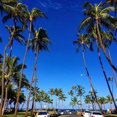 私の大好きなカイマナビーチ! 今日も暑かったね、ハワイ! ホノルルからお休みなさいー zzzzz
