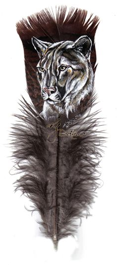 Drawn on a feather. How cool is that? ........Mountain Lion Feather by dittin03.deviantart.com