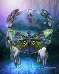 Shop for dragonfly dream catcher artwork and designs from the world's greatest living artists. All dragonfly dream catcher artwork ships within 48 hours and includes a 30-day money-back guarantee.