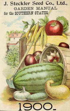 1900 - J. Steckler Seed Co., Ltd. garden manual 1900 : - Biodiversity Heritage Library. #BHLinbloom