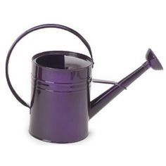 1 gallon watering can $19.99