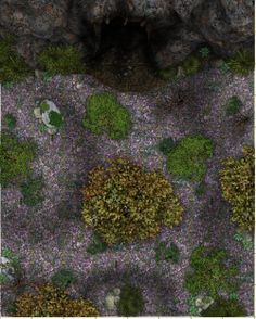 Dundjinni Mapping Software - Forums: Generic maps! Forest.