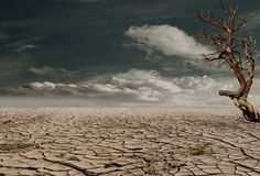 Desert, Drought, Dehydrated, Clay Soil, Clay, Earth