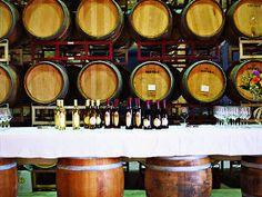 Wine and shine on California's Sacramento Delta | Sunset
