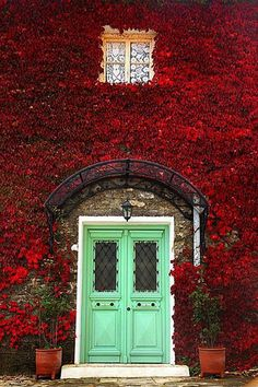 Image result for beautiful front doors