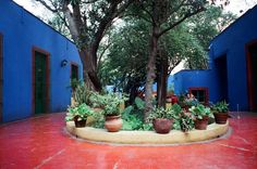 Frida Kahlo's Casa Azul - whenever I have a kitchen I can paint I definitely want the walls to be this color.  It'll be more awesome than it sounds.