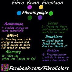 Fibro Brain Function and how it affects our actions. I find this both funny and sad. Fibromyalgia Pain, Chronic Migraines, Chronic Illness, Chronic Pain, Rheumatoid Arthritis, Mental Illness, Ankylosing Spondylitis, Chronic Fatigue Syndrome, Invisible Illness