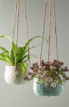 Gorgeous hanging planters - Hand-painted, crackled glaze lends color and luster to a beautifully textured terracotta pot perfect for hanging indoor and outdoor plants alike. Jade Plants, Potted Plants, Plant Pots, Pots For Plants, Bamboo Plants, Tomato Plants, Small Plants, Diy Hanging, Hanging Planters