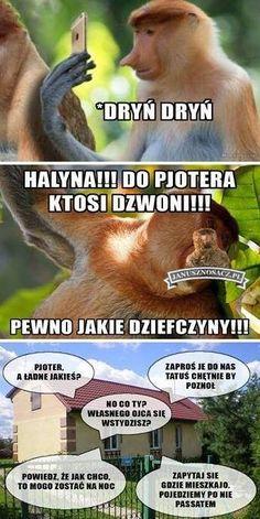 Polish Memes, Life Decisions, Man Humor, Haha, Funny, Ha Ha, Funny Parenting, Hilarious, Fun