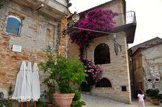Piante e fiori adornano le strette vie di Grottammare!