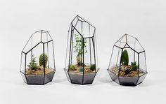 Geometric Glass Terrariums and Lamps -   Le studio de design canadien Score+Solder, fondé par Matthew Cleland, propose de très beaux terrariums et des lampes en verre, jouant avec des formes géométriques. Faits à la main, ces objets sont conçus en différentes tailles, en verre transparent ou teinté, suivant des formes pyramidales, cubiques ou dodécaédriques.