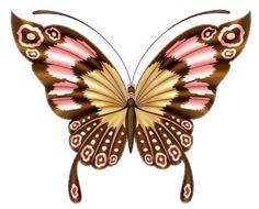 WP_CH_BUTTERFLY2.png