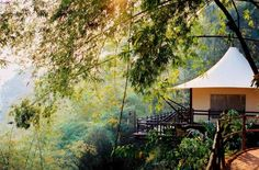 Stay in deluxe tented accommodations in the middle of the jungle. Yes, this will be the most amazing glamping experience of your life.