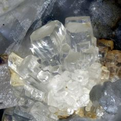 Capranica, Vico Lake, Viterbo Province, Lazio, Italy - Nice colorless crystals of danburite on matrix Rocks And Gems, Geology, Minerals, Europe, Italy, Jewels, Gemstones, Ornaments, Crystals