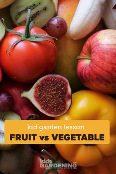 In this hands-on lesson plan, kids explore the difference between the scientific and common definitions of a fruit. Designed for K-2nd grade, this simple lesson is perfect for science or nutrition curriculum or a fun garden activity at home or in schools. Orange Glazed Chicken, Fruit Nutrition, School Gardens, Irish Potatoes, Pepper Seeds, Apple Salad, Variety Of Fruits, Parts Of A Plant