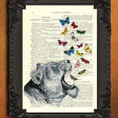 Roaring lioness with butterflies vintage illustration book page - beautifully upcycled La Petite Illustration french book page art print