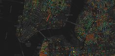 NYC Tree Mapping