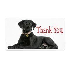 #Thank You Black Labrador Retriever  Dog Sticker - #labrador #retriever #puppy #labradors #dog #dogs #pet #pets