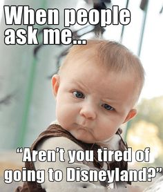 34 Memes Every Disneyland Enthusiast Will Find Funny - Part 3