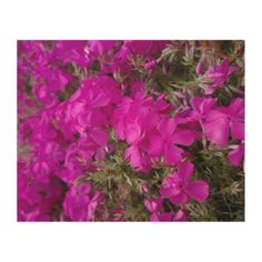 pink flowers wood wall art Bloom Blossom, Perfect Plants, Wood Wall Art, Wood Print, Keep It Cleaner, Pink Flowers, Holiday Cards, Garden, Blossoms