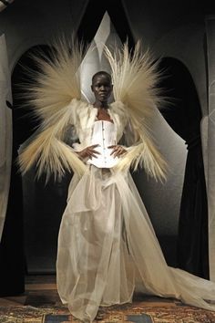 Mr Serkan Cura: Master Feather
