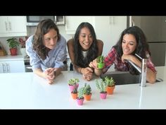 #DIY House Plant Decor.  Take a minute to watch this episode of #nml with @THESILL #Greenthumb