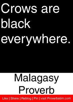 Crows are black everywhere. - Malagasy Proverb #proverbs #quotes