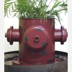 Cute fire hydrant planter for outside