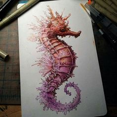 Seahorse / ink and paint Seahorse Drawing, Seahorse Tattoo, Seahorse Art, Seahorses, Seahorse Painting, Ocean Drawing, Ink Drawings, Animal Drawings, Drawing Animals